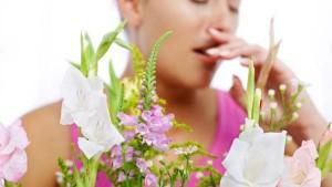 alergia-cvetia