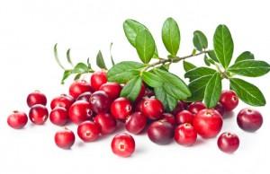 chervena-borovinka