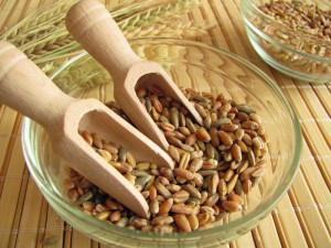 Защо пшеницата причинява подуване и с какво да я заменим ?